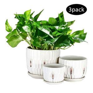 3pk flower pots